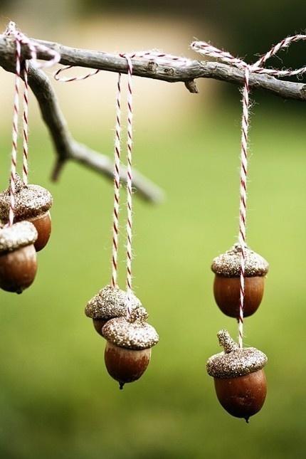 Acorns on string